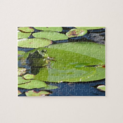 Frog on a Lily Pad Puzzle