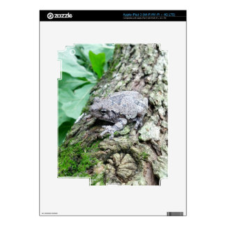 Frog on a Log apple i pad number 3 Decal For iPad 3