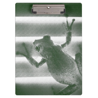 frog on blinds green sketch cool amphibian reptile clipboard
