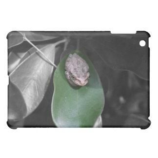 Frog on green leaf bw iPad mini cover