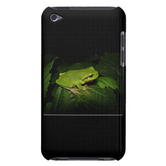 Frog on leaf Case-Mate iPod touch case
