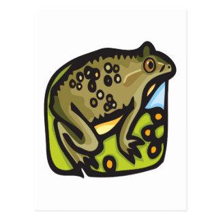 Frog On Lillypad Postcard