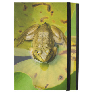 Frog on Lily Pads iPad Case
