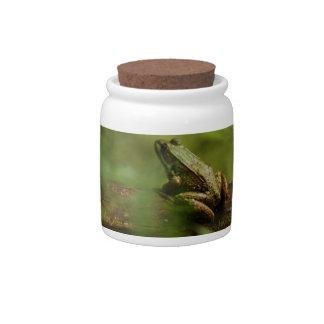 Frog on Log Candy Jar
