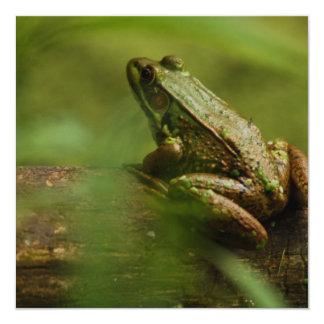 "Frog on Log Invitations 5.25"" Square Invitation Card"