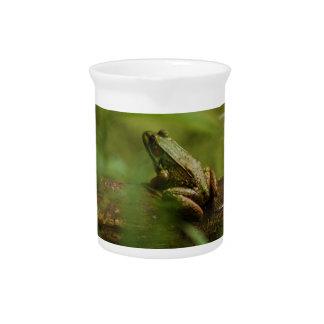 Frog on Log Pitcher