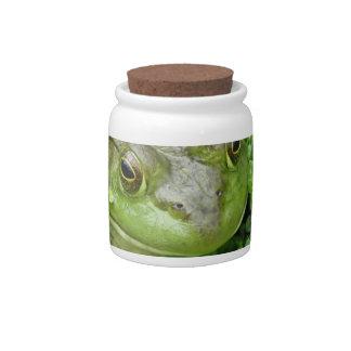 Frog on Marsh Cookie Jar Candy Jars