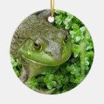 Frog on Marsh Ornament