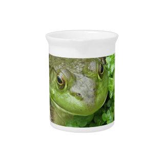 Frog on Marsh Pitcher
