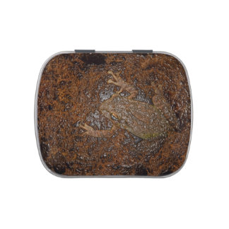 frog on moss embossed look candy tin