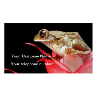 Frog on red flower cute photo custom business card