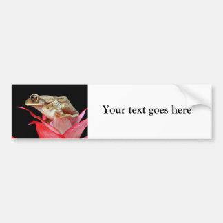 Frog on red flower photo custom bumper sticker