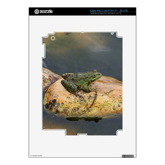 Frog on rock in pond, Arzua, Spain Decal For iPad 3