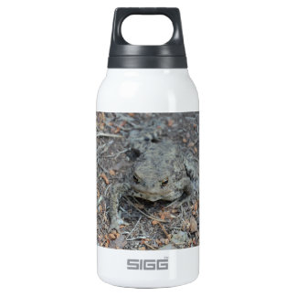 Frog On The Forest Floor Insulated Water Bottle