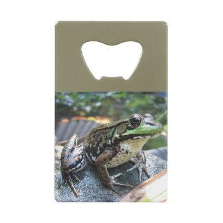 Frog Opener
