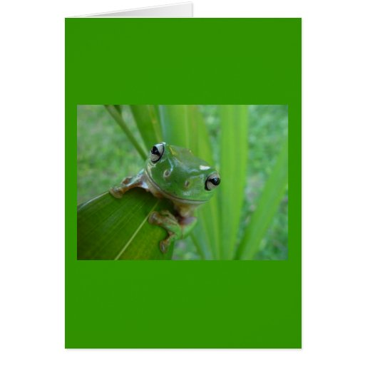 Frog or Toad, Whichever... Card