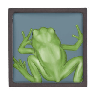 Frog Painting Gift Box