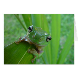 Frog Photo Greeting Card
