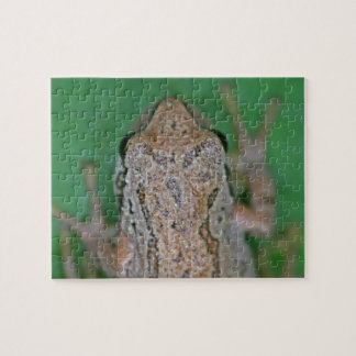 Frog Photo Jigsaw Puzzle
