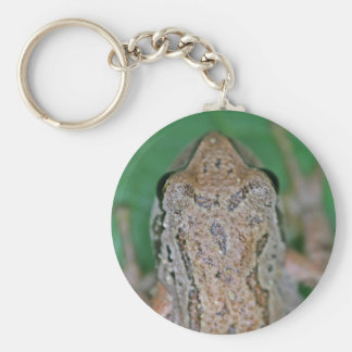 Frog Photo Keychains