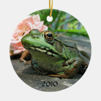 Frog Photo Ornament