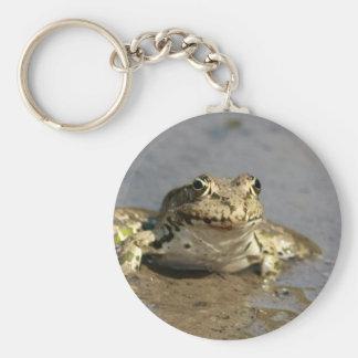 Frog Photograph Keychain