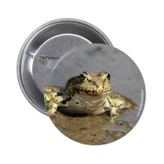Frog Photograph Round Pin