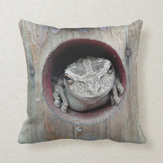 Frog Pillow With The Look of Stone