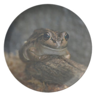 Frog Plates