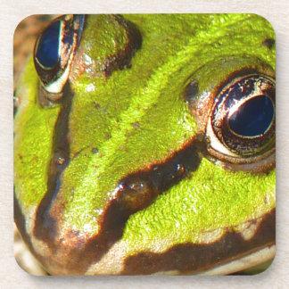 frog-pond-785 drink coaster
