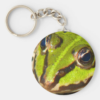 frog-pond-785 keychain