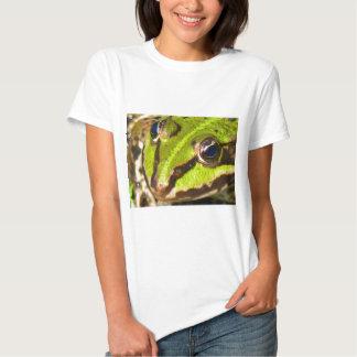 frog-pond-785 polera