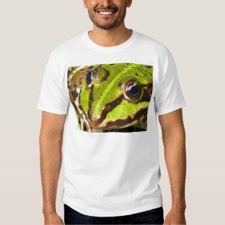 frog-pond-785 poleras