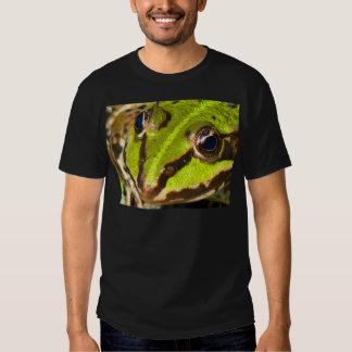 frog-pond-785 remera