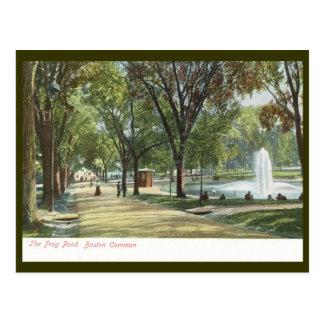 Frog Pond, Boston Common c1910 Vintage Postcard