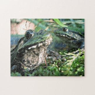 Frog Puzzle Extraordinaire #2
