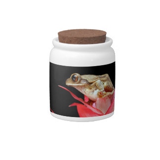 Frog  red flower beautiful photo cookie candy jar