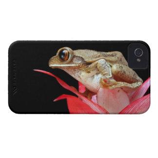 Frog red flower cute photo blackberry bold case