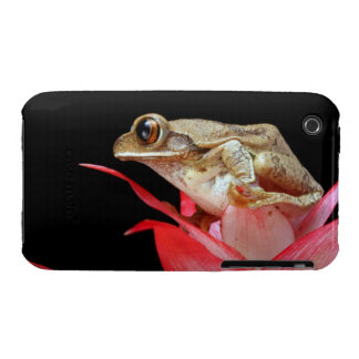 Frog red flower photo iphone 3G case mate barely