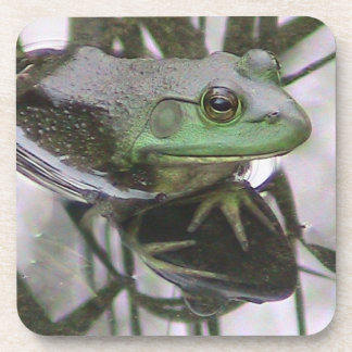 Frog reflected Cork Coaster