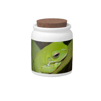 Frog Reflections Candy Jar