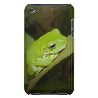 Frog Reflections iTouch Case iPod Touch Cover