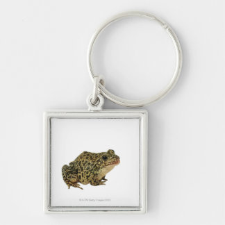Frog shadow keychain