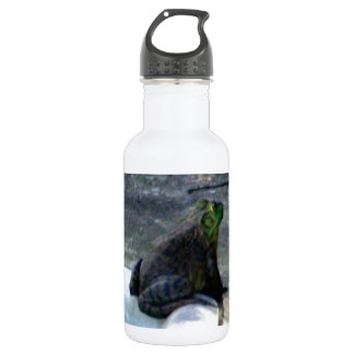 Frog Sitting By A Pool Stainless Steel Water Bottle