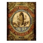Frog Skin Postcard