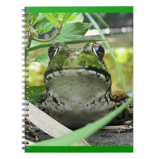 FROG SPIRAL NOTE BOOKS
