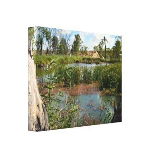 Frog_Swamp_Paradise,_Canvas_Picture. Canvas Print