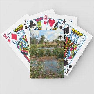 Frog_swap_Paradise,_ Bicycle Playing Cards