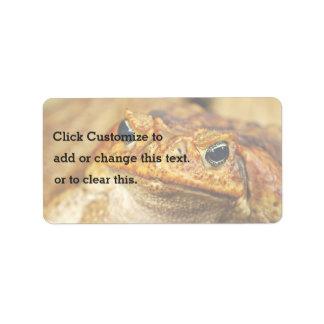 Frog Themed Address Label
