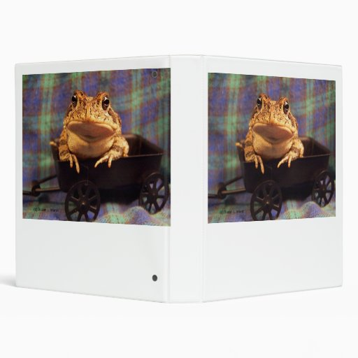 Frog Toad in black wagon with plaid background Vinyl Binder